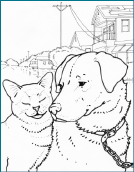 miami hurricanes coloring pages - photo#9